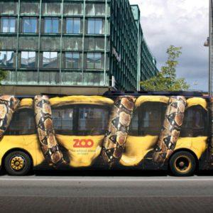 autobús serpiente