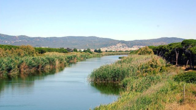 NATURAL SPACES OF THE DELTA DEL LLOBREGAT.
