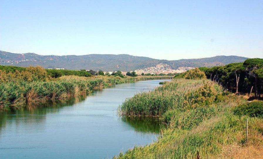 Espacios naturales del delta del Llobregat.