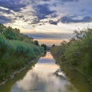 delta del llobregat