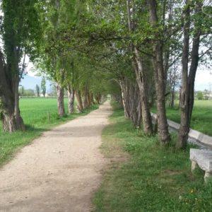 Camino de los Enamorados1