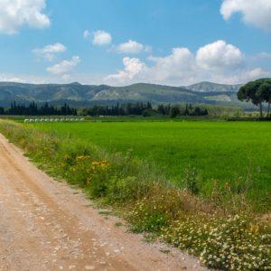 ruta Ullà i la Muntanya Gran