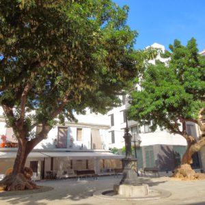 Plaza Prim