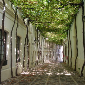 Calle de los Ciegos1