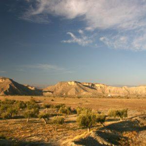Desierto de Tabernas1