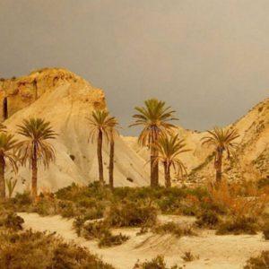 Desierto de Tabernas2