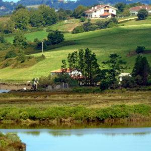 Reserva de Urdaibai1