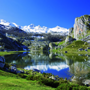 Picos de Europa1